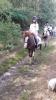 ponykamp 2017 kamp 1 05 07_27