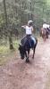 ponykamp 2017 kamp 1 05 07_33