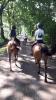 ponykamp 2017 kamp 1 05 07_78