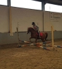 ponykamp 2017 kamp 2 03 08_20