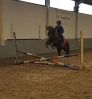 ponykamp 2017 kamp 2 03 08_33